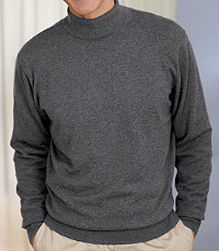 Signature Cotton Turtleneck Sweater