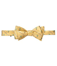 Palmetto Moon Bow Tie