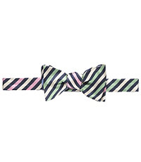 Executive Collection Reversible Stripe Bow Tie