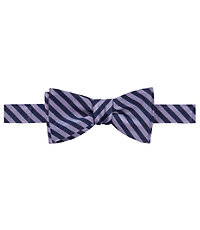 Executive Mini Gaurd Bow Tie
