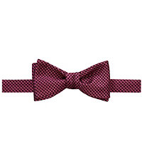 Executive Dotted Micro Bow Tie