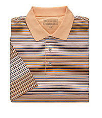 Stays Cool David Leadbetter Multi Stripe Polo